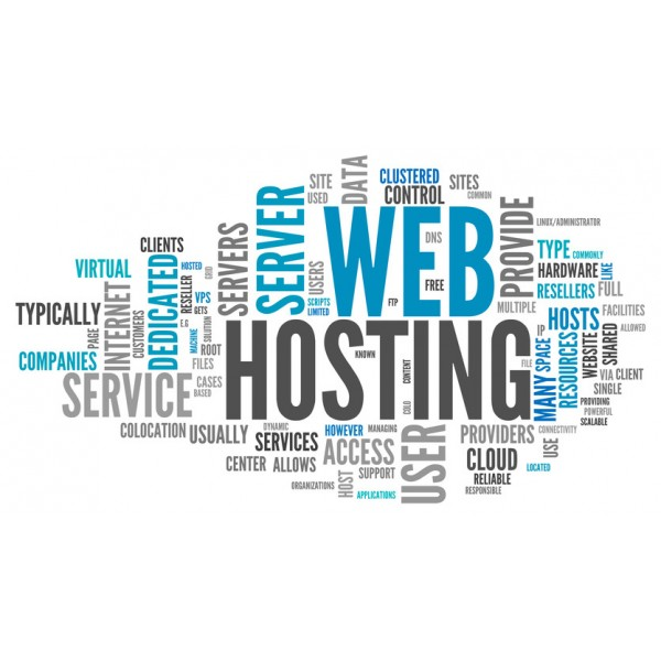 12 month Unmanaged WebHosting (Economy)
